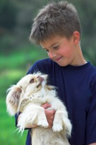 Kid with cat and dog